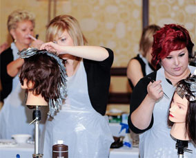 American Board of Certified Haircolorists (ABCH) Energizing Summit